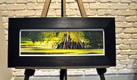 Giant Cypress Framed Print 8.5x18.5 $85