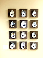 Oyster Shell Dozen on 8x8 bamboo panels $750